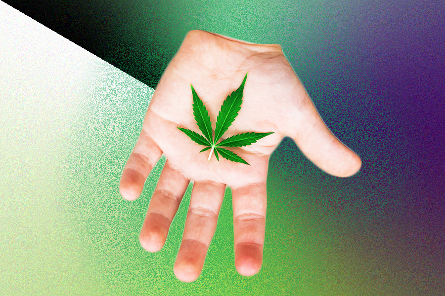 Can You Give Your Kid CBD? | MEL Magazine