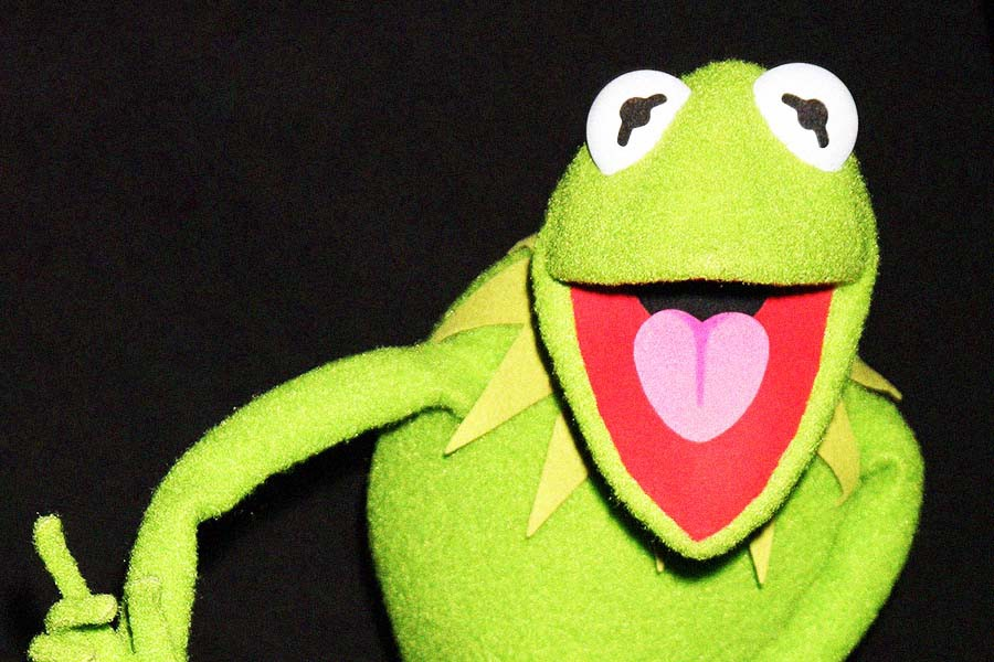 In Search Of The True Kermit The Frog Mel Magazine