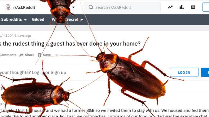 Rude_Guest