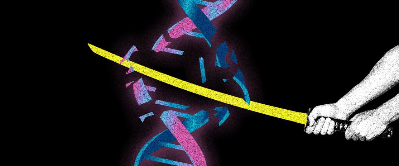 Stop_Genetics