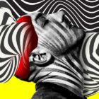 hypnotizeme
