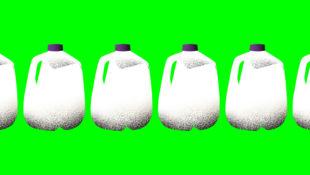 milkbros