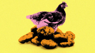 Chicken_Nugs