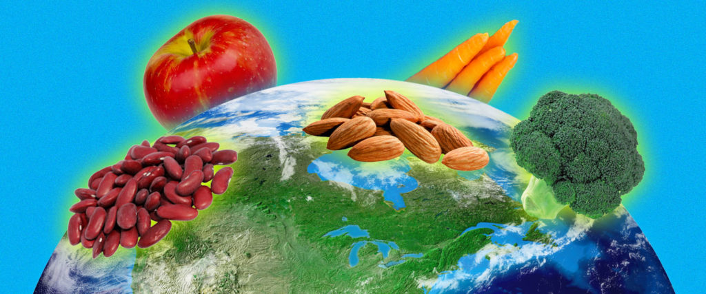 What Does the 'Planetary Health Diet' Mean for Me, an Average Guy Who Lives on This Stupid Planet?