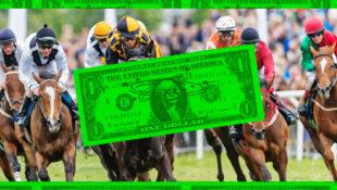 STUPIDMONEY_HorseRace