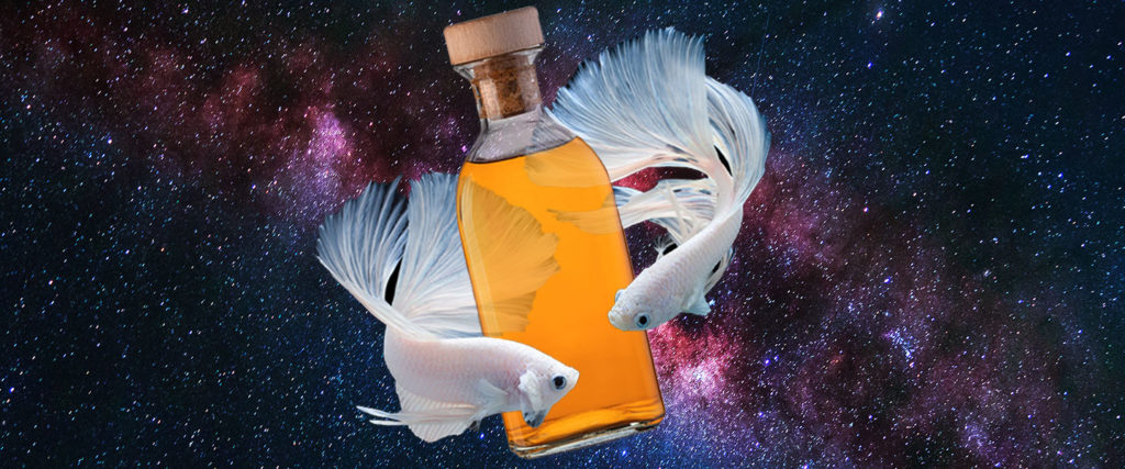 Are There Astrological Signs That Are More Prone to Addiction?