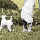Walk_Dog