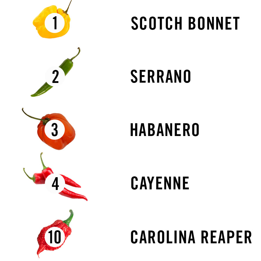 Ranking Types of Chili Peppers by How Healthy They Are   MEL