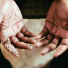 Hand_Wipe