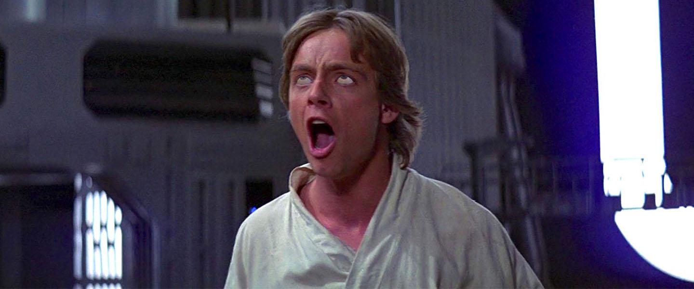 If Luke Skywalker Didn't Die a Virgin, Whom Did He Bone?
