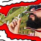 thingsilearned_Weed