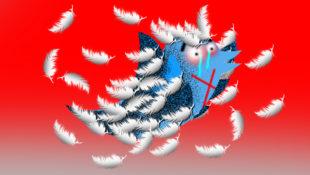 twittershaming