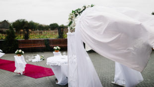 Wedding_Peril