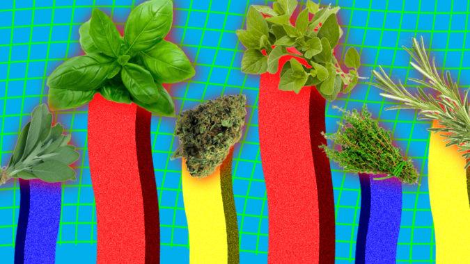 ranked_Herbs