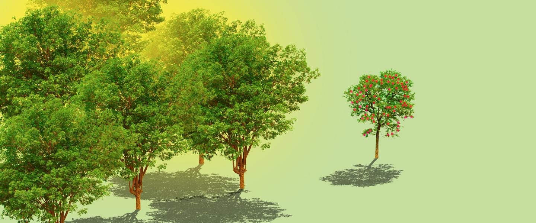treesexism