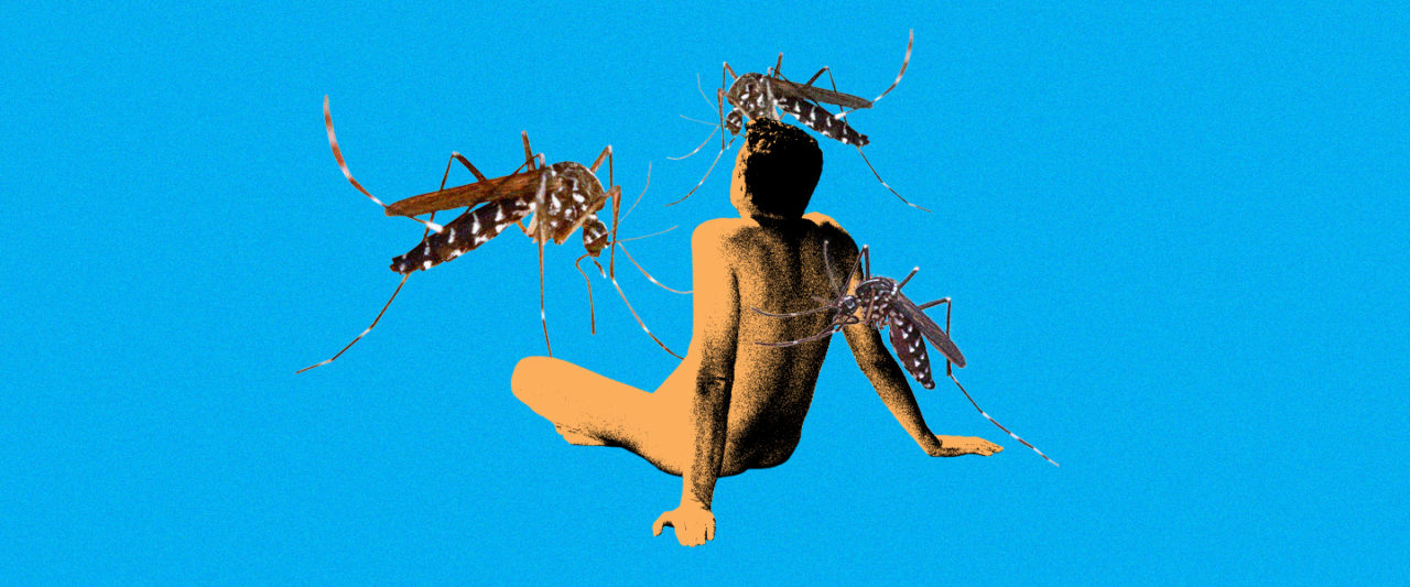 Nudist_Mosquitos
