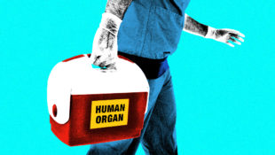 Organ_Donor