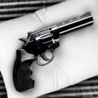 gunbed