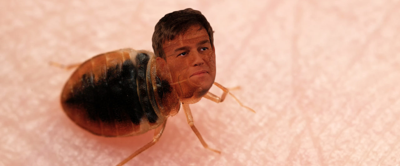 bedbug2