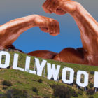 hollywoodbodys