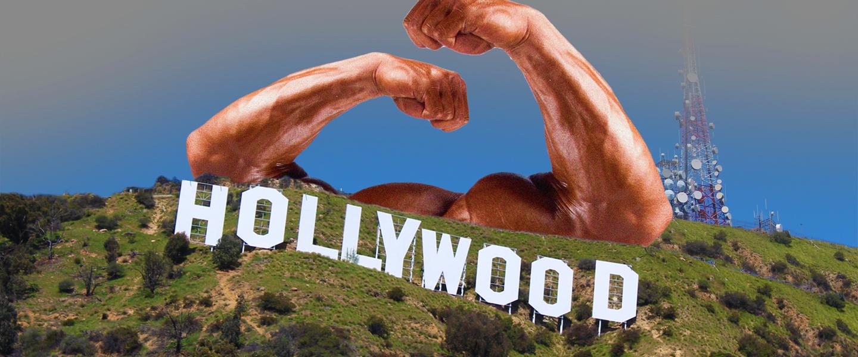 hollywoodbodys