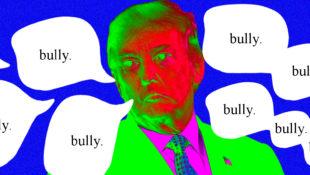 bullyuseage