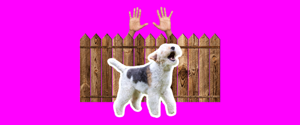 What to Do If Your Neighbor's Dog Won't Stop Barking