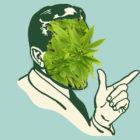 Mr_Nice_Weed