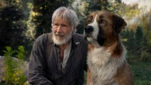 Canine_Actors