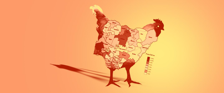 ChickenNigeria copy