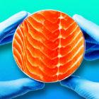 Fake_Fish
