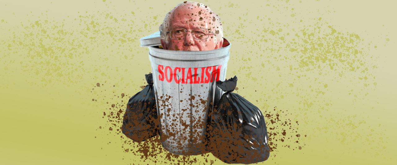Bernie Sanders Socialism Airplane