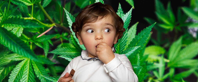 My_Toodler_Just_Ate_My_Weed