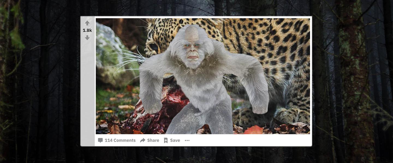 Reddit_Thetruthisoutthere_Quarantine_Binge_Bigfoot
