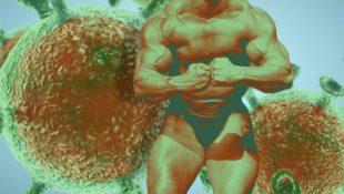 bodybuildercorona