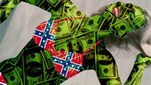 economics_confederate_bikini