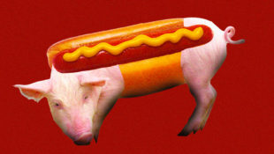 pig_parts_hot_dogs
